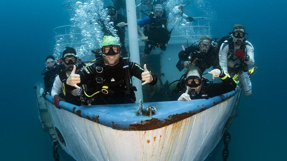 Palm Beach County, Florida Reopens Their Doors to Scuba Divers 3