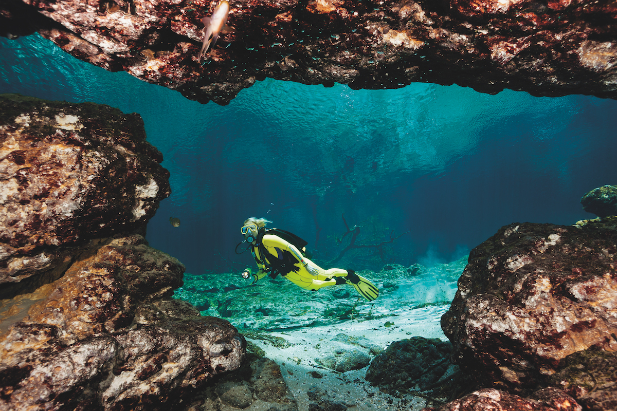 A Guide To Florida Springs Diving