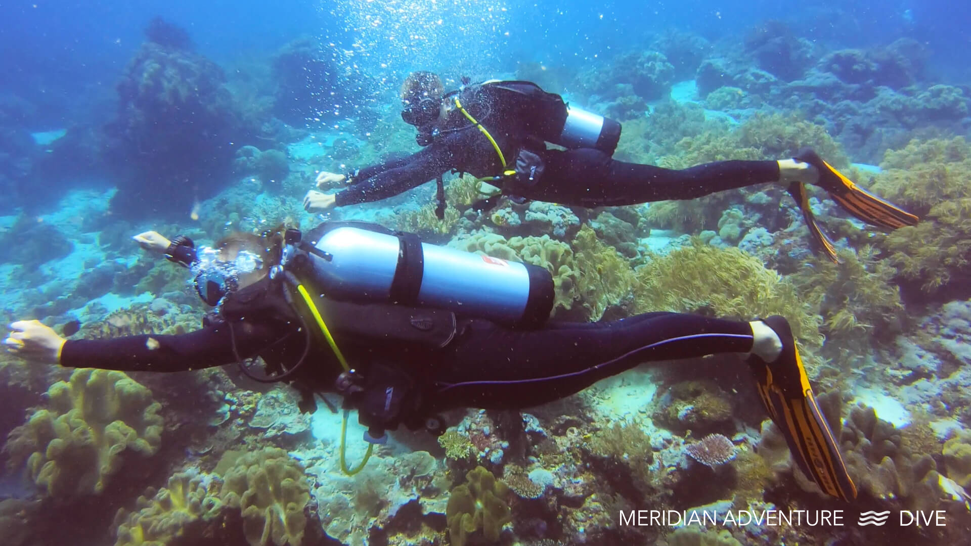 Meridian Adventure Dive.