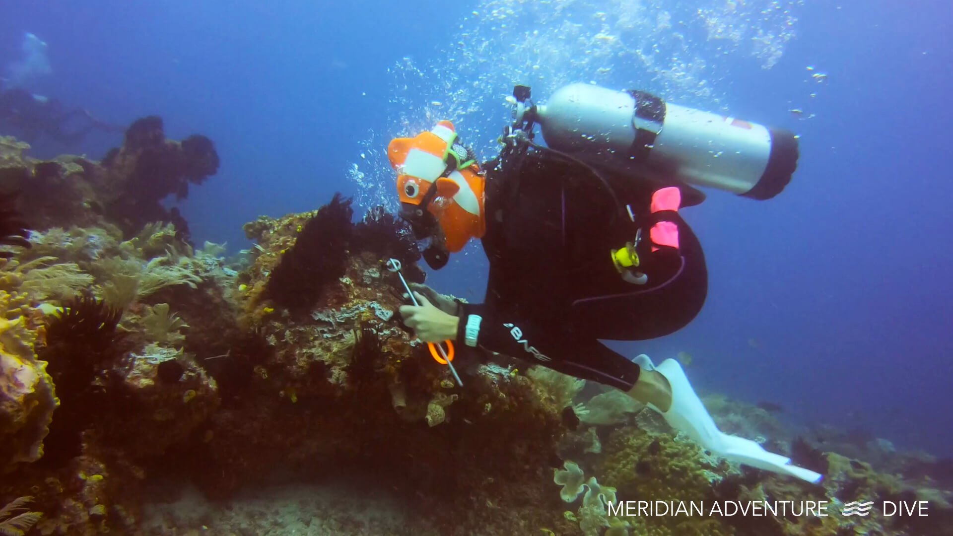 Raja Ampat diving - Doing The Worm.