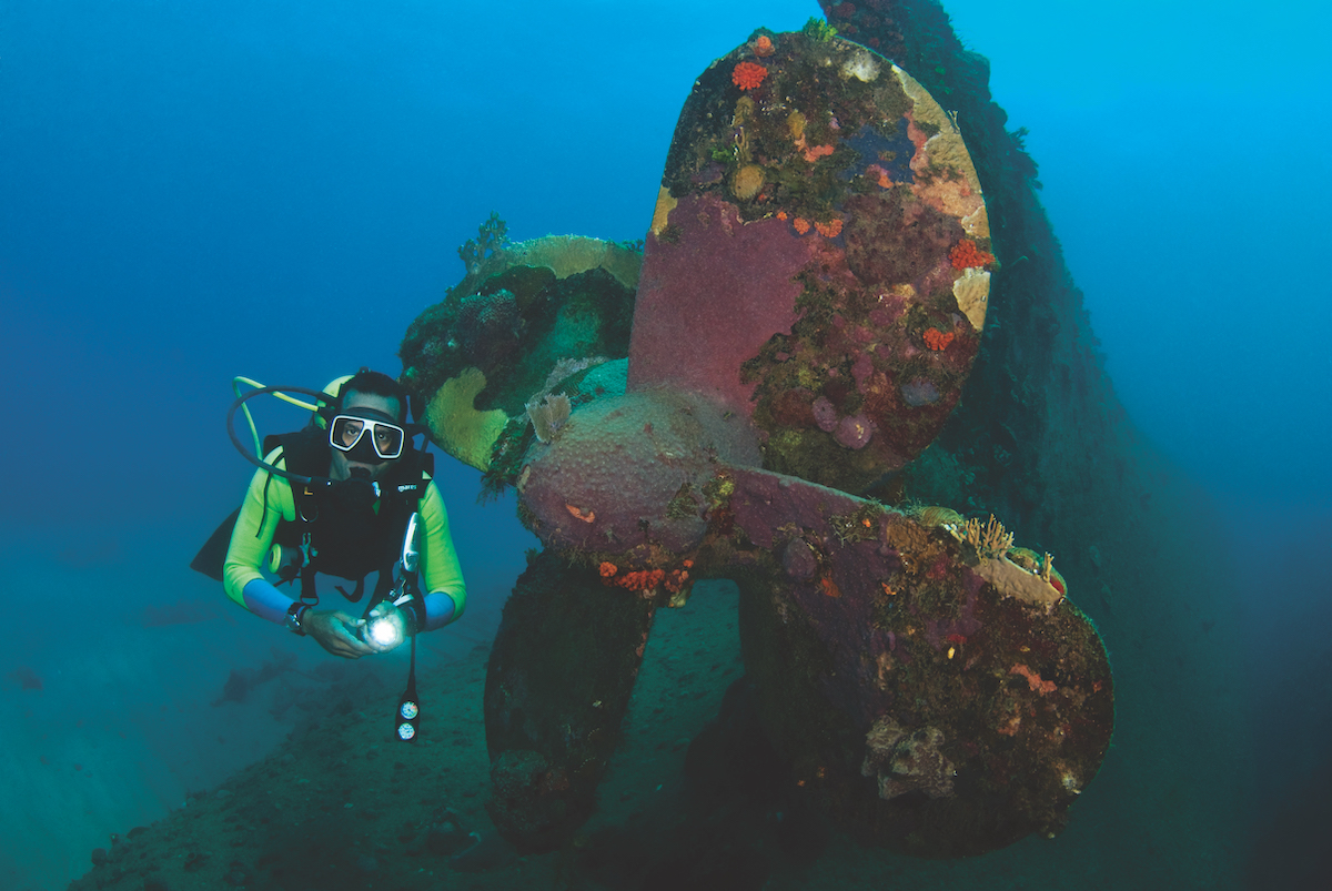 Best wreck diving in the Caribbean - propellor.