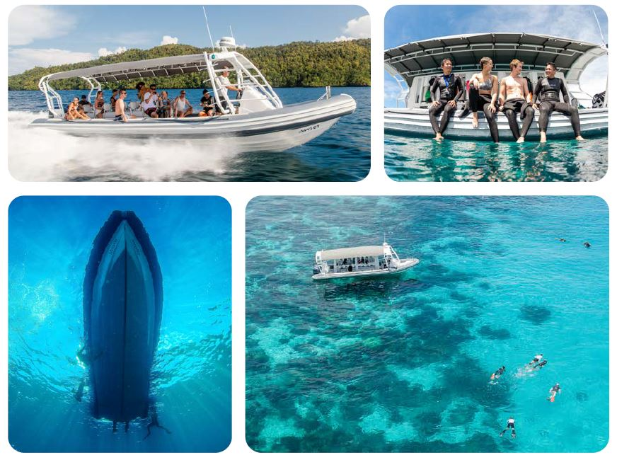Special Dive Packages for Raja Ampat