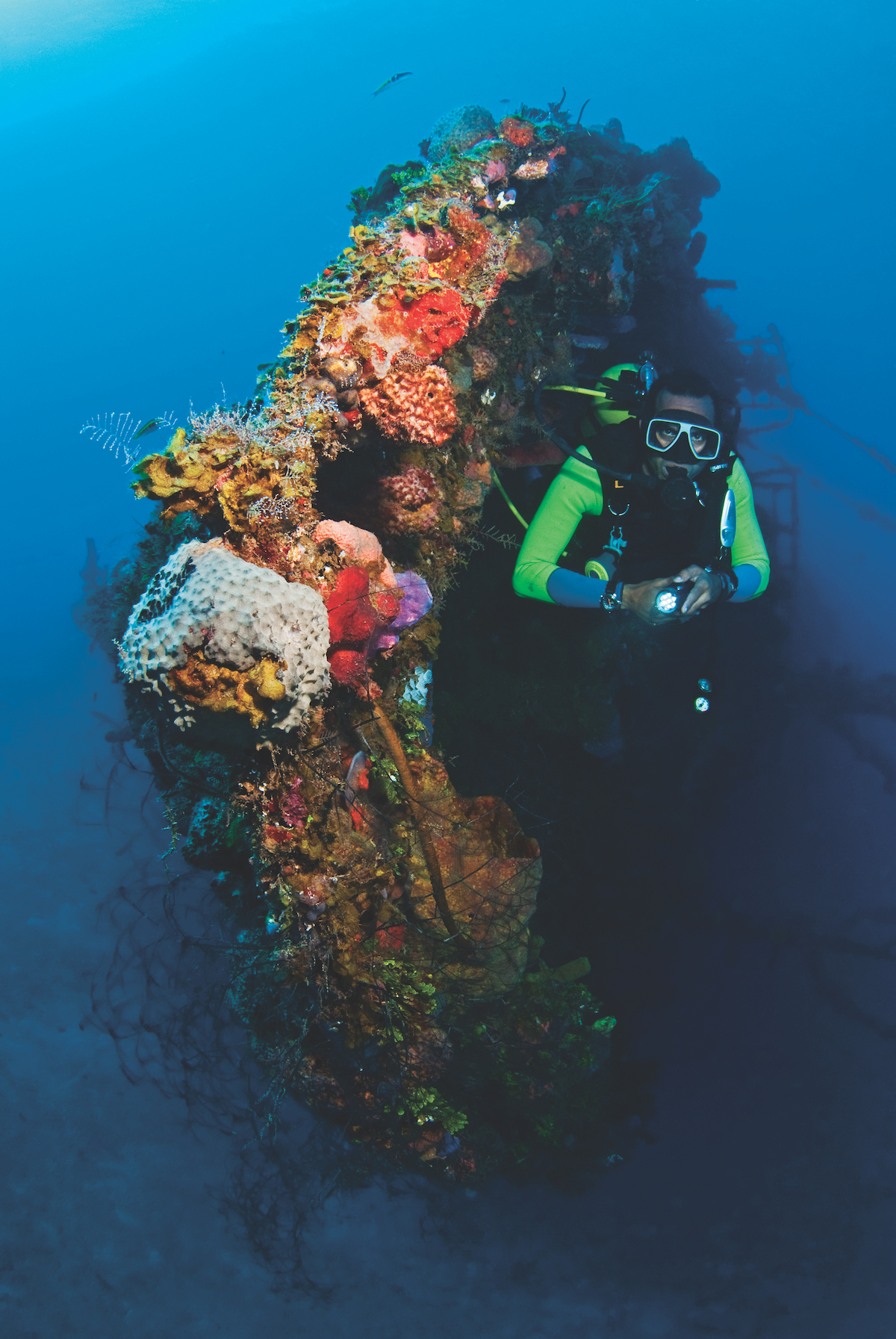 Best wreck diving in the Caribbean.